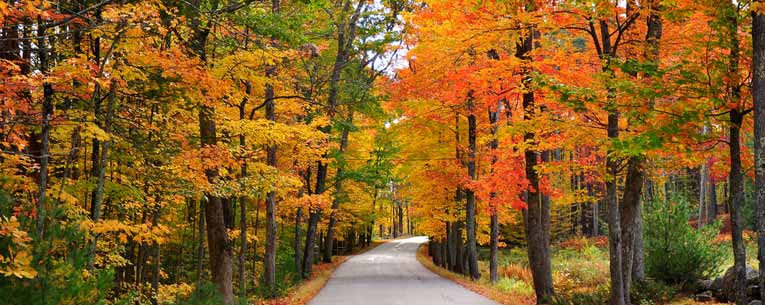 Guide To A New England Fall Vacation Allianz Global