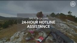 Allianz - hotline assistance