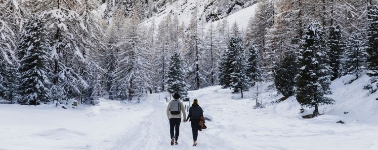 Allianz - couple hiking in winter